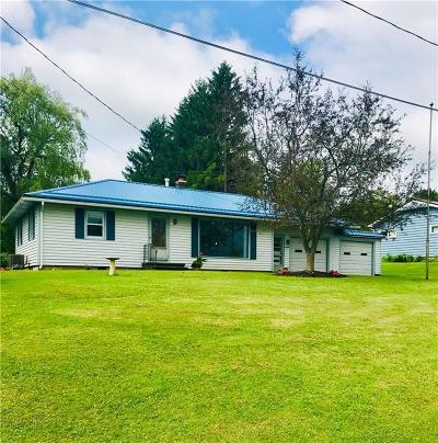 Lakewood Single Family Home For Sale: 3699 Baker Street