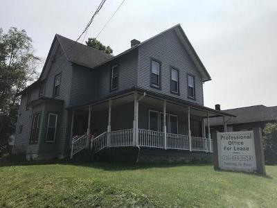 Jamestown NY Commercial For Sale: $129,900