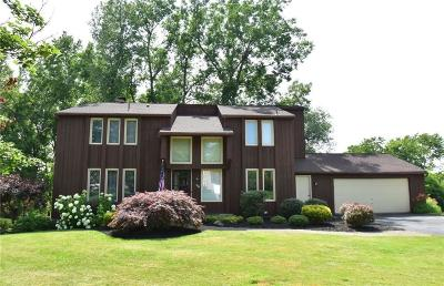 Perinton Single Family Home For Sale: 29 Misty Pine Rd Road