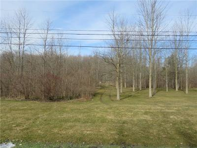 Sweden Residential Lots & Land For Sale: 6683 N Lake Road