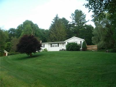 Cayuga County Single Family Home For Sale: 5306 Dresserville Road
