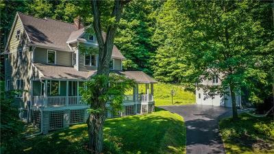 Victor Single Family Home For Sale: 1298 Malone Road