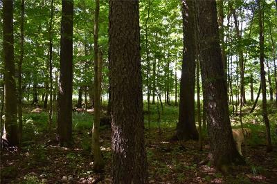 Chautauqua County Residential Lots & Land For Sale: Carpenter-Pringle Road