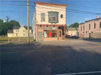 Monroe County Commercial For Sale: 554 Jefferson Avenue