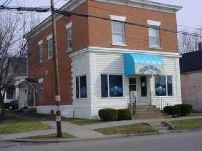 Chautauqua County Commercial For Sale: 49 E Doughty Street