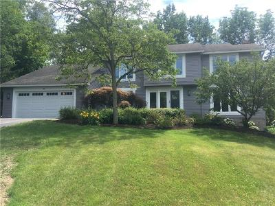 Perinton Single Family Home For Sale: 45 Kirkby Trl