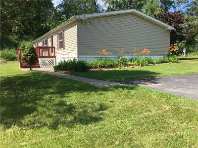 West Bloomfield Single Family Home For Sale: 72 Center Lane