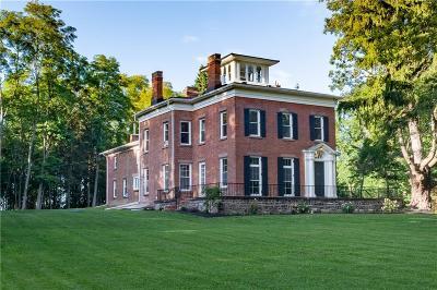 Wayne County Single Family Home For Sale: 259 Lake Road
