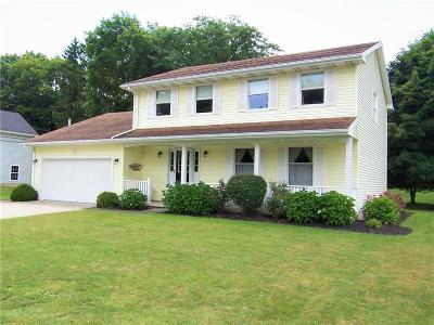 Genesee County Single Family Home For Sale: 5 Allanview Drive