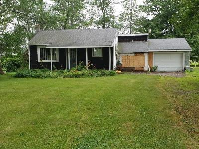 Wayne County Single Family Home For Sale: 5701 Walworth Road