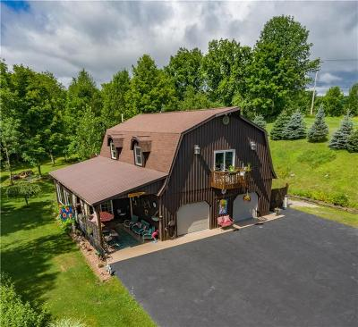Naples Single Family Home For Sale: 8877 State Route 21