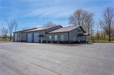Commercial For Sale: 252 David Parkway