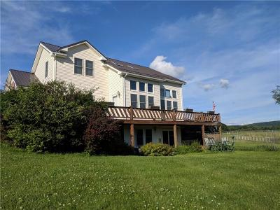 Allegany County, Cattaraugus County Single Family Home For Sale: 6326 Palmiter Road
