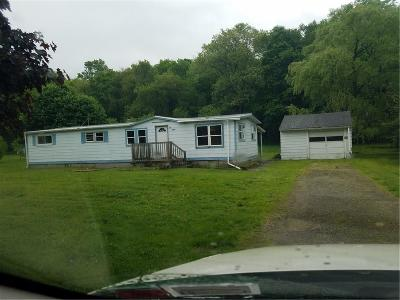Single Family Home For Sale: 3580 County Road 12