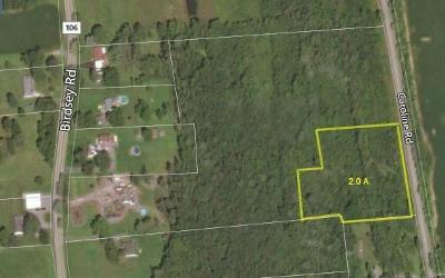 Residential Lots & Land For Sale: Part Of 893 Birdsey Road