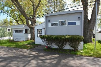 Rochester Single Family Home For Sale: 1531 Buffalo Road #11
