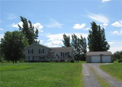 Orleans County Single Family Home For Sale: 16744 Lakeshore Road