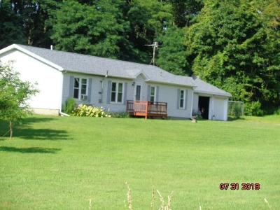 Fredonia Single Family Home For Sale: 3144 Straight Road