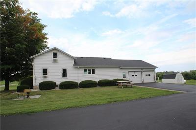 Orleans County Single Family Home For Sale: 1379 Center Road