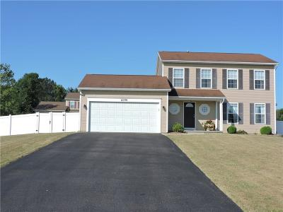 Wayne County Single Family Home For Sale: 6099 Lillypond Way