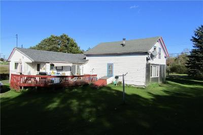 Bemus Point NY Single Family Home For Sale: $94,900
