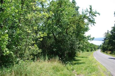 Residential Lots & Land For Sale: Esperanza Road