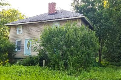 Phelps NY Single Family Home For Sale: $34,900