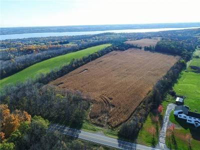 Residential Lots & Land For Sale: 01 Parrish Street Extension