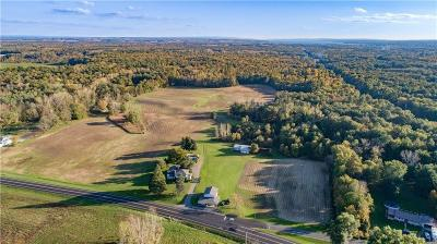 Waterloo NY Residential Lots & Land Active Under Contract: $149,000