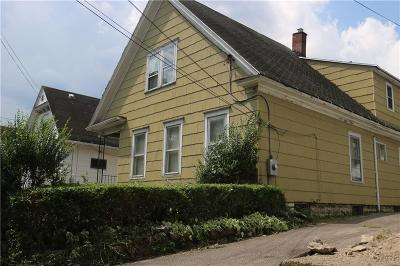 Rochester Single Family Home For Sale: 189 5th Street