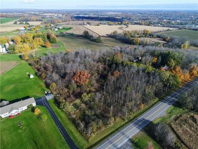 Canandaigua-city, Canandaigua-town Residential Lots & Land For Sale: 03 Parrish Street Extension