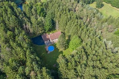 Mendon Single Family Home For Sale: 286 Mendon Center Road