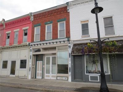 Commercial For Sale: 17 Columbia Street