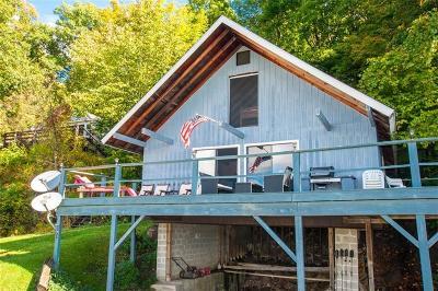 Moravia NY Single Family Home For Sale: $249,900