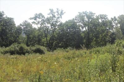 Ontario County Residential Lots & Land For Sale: 7634 State Route 251