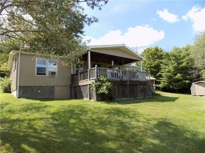 Wayne NY Single Family Home For Sale: $89,500