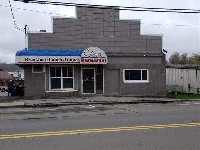 Commercial For Sale: 6014 New Hartford Street