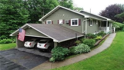 Naples Single Family Home For Sale: 8656 State Route 53