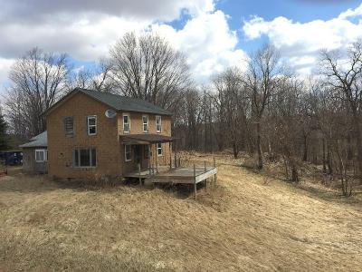 Covington Single Family Home For Sale: 1581 Route 246