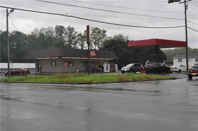 Commercial For Sale: 803 County Road 4