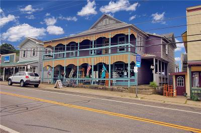 Commercial For Sale: 10365 Main Street