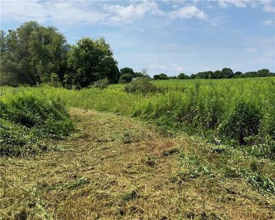 Mendon Residential Lots & Land For Sale: 317 Mendon Ionia Road