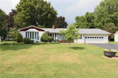 Erie County Single Family Home For Sale: 2088 Danna Drive