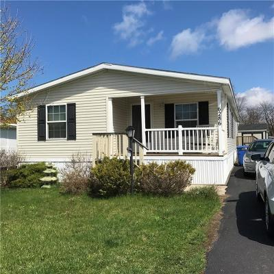 Williamson NY Single Family Home For Sale: $64,900