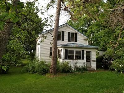Ontario County Single Family Home For Sale: 9126 State Route 5 And 20