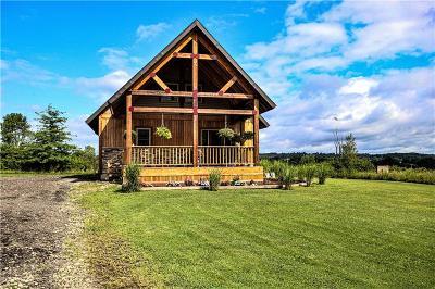 Jamestown Single Family Home For Sale: 1059 Kiantone Road