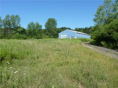 Jamestown NY Commercial For Sale: $79,900