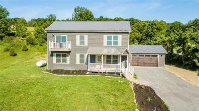 Genesee County, Livingston County, Monroe County, Ontario County, Orleans County, Wayne County Single Family Home For Sale: 4700 State Route 21