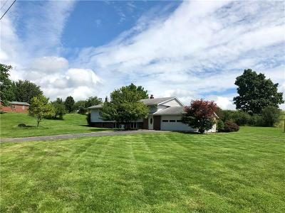 Single Family Home For Sale: 6488 Cayuga Road