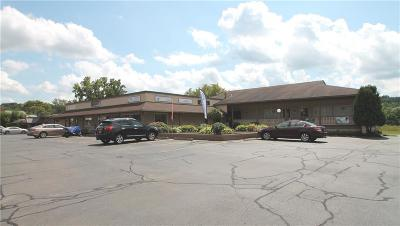 Monroe County Commercial For Sale: 1671 Penfield Road